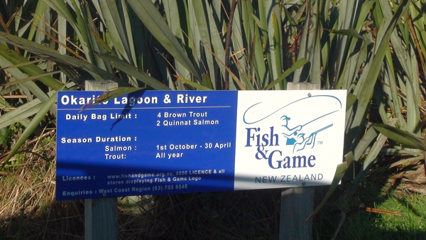 2014 NZ Okarito Lagoon fishing