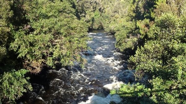 2014 NZ Okarito drive river