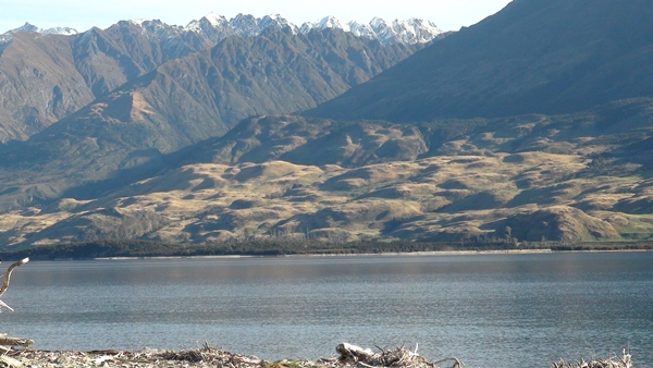 NZ 2014 Lake Wanaka