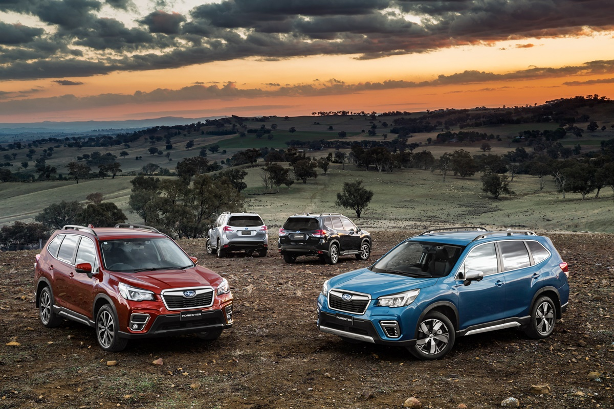 2019 Subaru Forester Model Pricing And Specifications Ozroamer