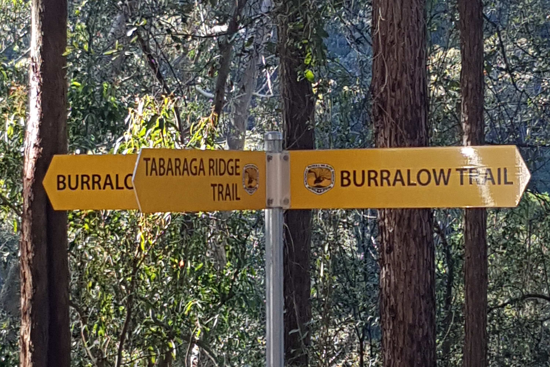 Bulcamatta Falls Crossroads